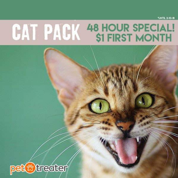 pet treater cat pack coupon