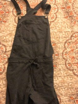 z supply french terry overalls