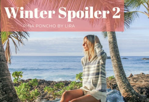 beachly winter box