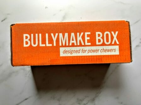 bullymake february review