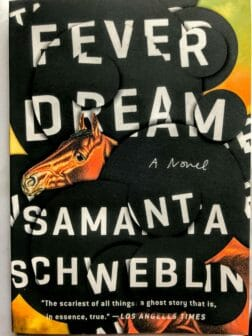 fever dream samanta schweblin